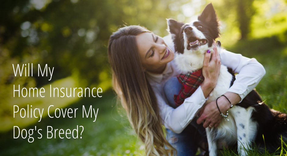 blog image: woman hugging dog; blog title: will my home insurance policy cover my dog's breed